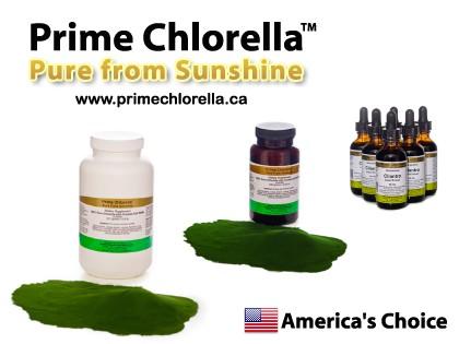 chlorella-powder.jpg