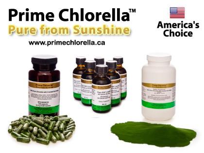 chlorella-products.jpg